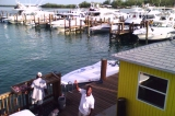 Browns Marina & BIG JOHN'S Hotel & Conch Shell Bar