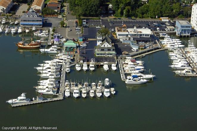 Harbour Point Virginia Beach Va For Rent