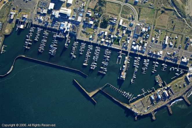 Westport (WA) United States  city pictures gallery : Westport Marina in Westport, Washington, United States