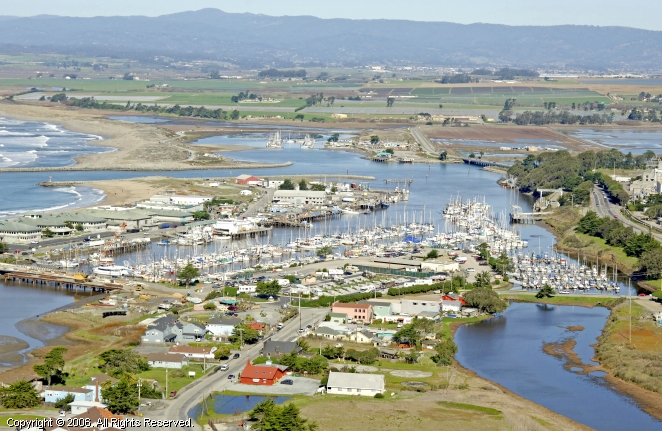 meet moss landing singles Kayaking with humpback whales and otters at moss landing, 5/20 at moss landing on sun may 20 2018, 9:00am: join us for a real adventure, kayaking with.