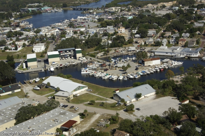 Tarpon Springs (FL) United States  city photos : Turtle Cove Marina in Tarpon Springs, Florida, United States